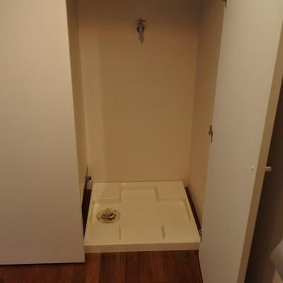 洗濯機は隠すことができます