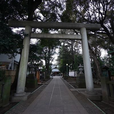 近くに大きな神社が!