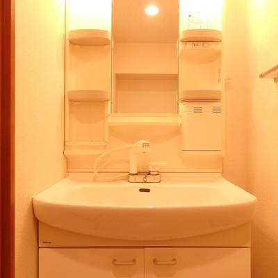 シャワーつきの洗面台!