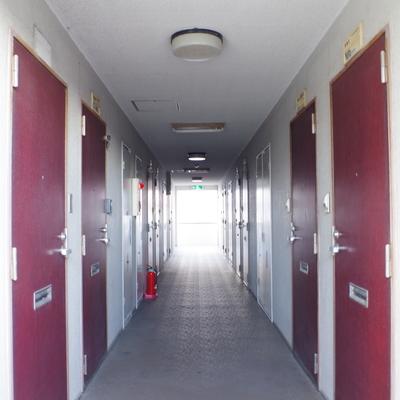 中廊下型の共用部はちょっとレトロなエンジ色のドア