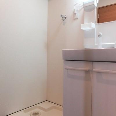 お風呂前に洗面所!収納たっぷり