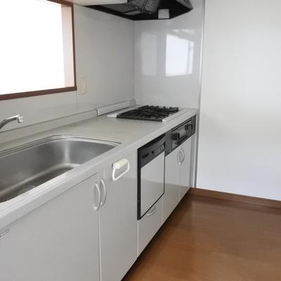 大きなキッチン!食洗機もある!