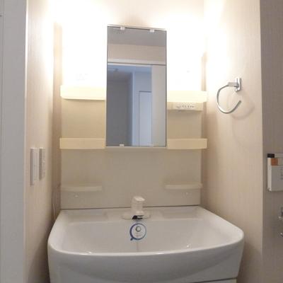 トイレと同じ空間ですが洗面台はしっかりしてます