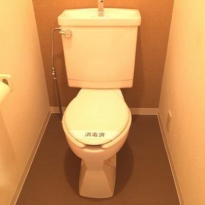 温水洗浄便座が設置されるようです