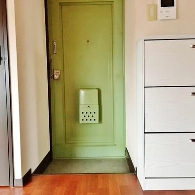 玄関扉も外観と同じ、ライムグリーン。
