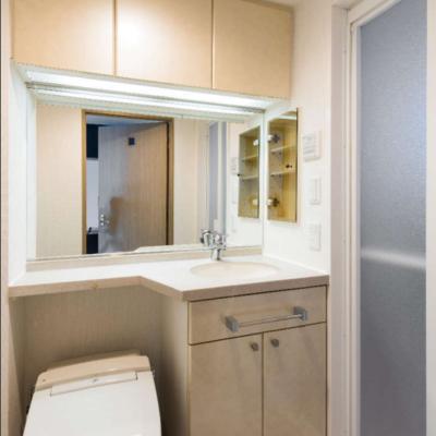 壁収納もしっかりとしたトイレ・洗面台です