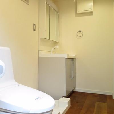 洗面台とトイレが同空間です