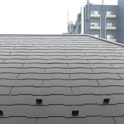 玄関から出たときのの眺望は家の屋根!視線は気になりません!