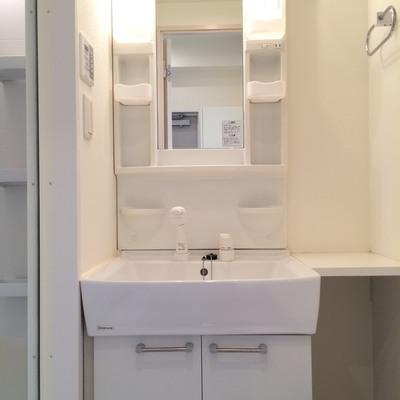 トイレ横に大きな独立洗面台