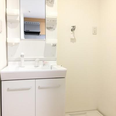 独立洗面台と洗濯機置き場