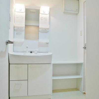 洗面台隣の棚にはタオルや洗濯用品を。