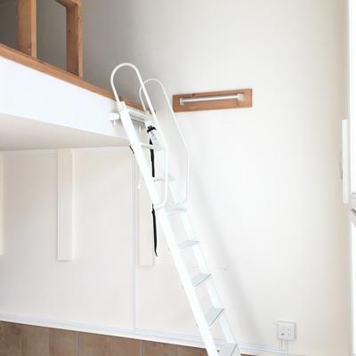 天井も高くて開放的。はしごを登ると