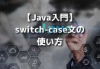 java switch case2