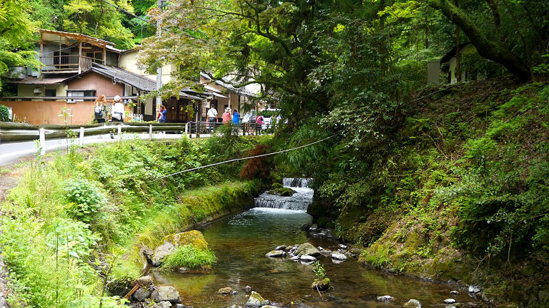 Enjoy the summer tradition of kawadoko at Kibune!