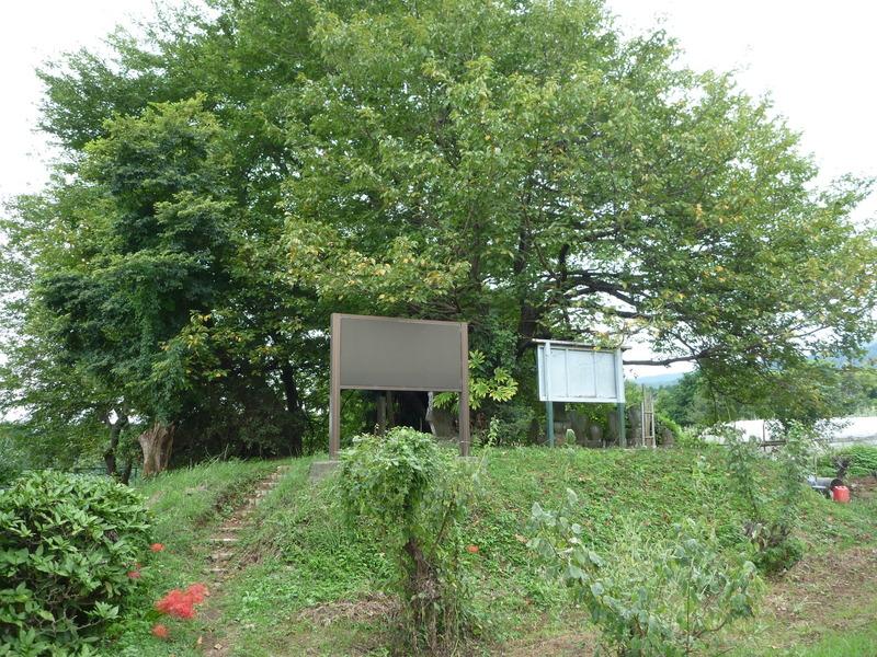 岩原城は大森氏頼(寄栖庵)の隠居後の居城といわれ、舌状台地の上に築かれていた。  南の小田原城、東の松田城、そして、北の足柄平野の入り口を監視できる位置にある。
