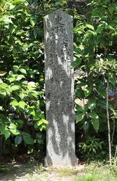 【淀古城跡の石碑がある妙教寺】<p>豊臣秀吉の側室、淀殿が鶴松を出産したという淀古城。<br>その石碑が妙教寺境内にある。</p> <p>時代は下って、幕末の鳥羽・伏見の戦いの際には、この付近は激戦地となり、妙教寺本堂にも砲弾が飛んできて、本堂丸柱に当たって、貫通したそうだ。</p> <p>やや見づらいが、石碑の左側に「戊辰役砲弾貫通跡」と書いてある。</p>