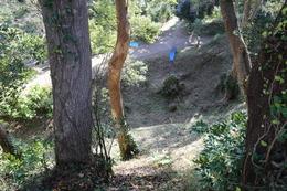 <p>下田城の伝天守台から周囲の堀を撮影。この辺は畝堀であったらしい。</p>
