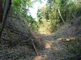 【小山城の空堀】小山城の空堀は想像以上に遺構が残っていた。 小山氏のあと、北条、徳川が統治しているので、その改修を受けていると思われる。  4年くらい前に訪問したので、正確な場所は覚えていない。