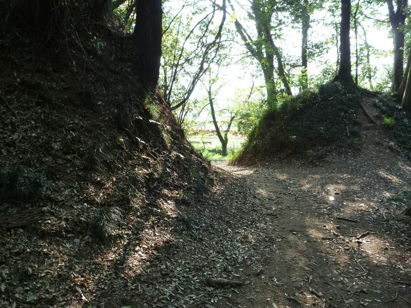 【小山城の虎口】小山城の虎口もなかなか印象的だった。  4年ほど前に訪問したので、正確な場所は忘れ申した。