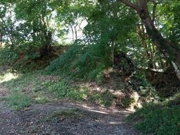 【韮山城】三ノ丸土塁。城池から入ったところの土塁。なかなかの高さ。