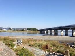 【小田原城】酒匂川。小田原城の東側を流れる。写真の右手は相模湾。