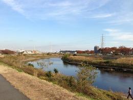 【小机城】遠景。鶴見川上流より撮影。
