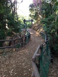 【小机城】本丸に入る前の土橋。