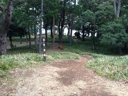 【石垣山一夜城】天守台跡から本丸を撮影