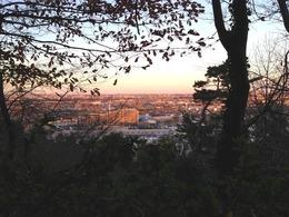 【高幡城】本丸から北西を撮影