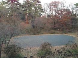 【高幡城】馬場跡。左側の丘陵が本丸。