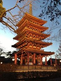 【高幡城】ライトアップされた五重塔