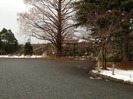 【田辺城】本丸北側の石垣