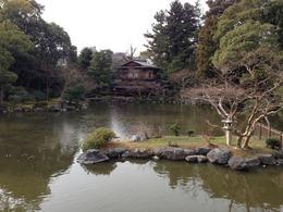 【京都御所】九条池。薄く氷が張っている