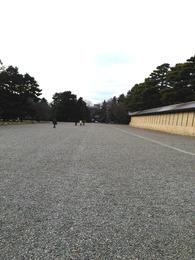 【京都御所】建礼門から蛤御門を撮影。中央部に小さく見えるのが蛤御門。