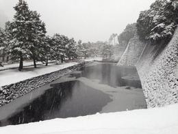 【江戸城】汐見坂から白鳥濠を撮影。