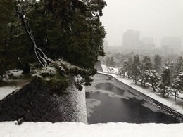 【江戸城】本丸の展望台から白鳥濠を撮影。