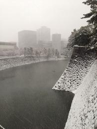 【江戸城】北桔橋門(きたはねはしもん)より平川濠を撮影。この高さはなかなかのもの。