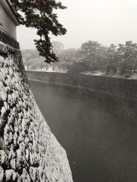 【江戸城】北桔橋門から乾濠を撮影。かなりの高さ。