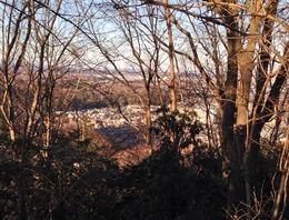 【廿里砦】初沢城の山頂から廿里砦を遠望。市街地の上(北側)の森が廿里砦。中央の市街地が高尾で、中央やや右が高尾駅。