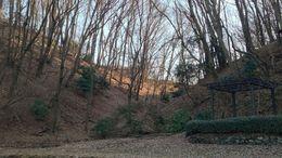 【片倉城】二の丸と推定外郭を北側で分ける谷。実質、巨大な空堀の役目を果たしている。