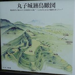 【丸子城】現地案内板。分かりやすい。丸子谷に入ってすぐの所にあったと記憶しているが。。