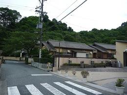 【丸子城】目の前の山が丸子城。位置と方位から考えると、左側の山が本曲輪か。