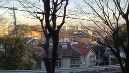 【玉縄城】相模陣神社から集落があった南東方向を撮影。