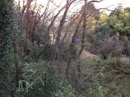 【松山城】曲輪四から惣曲輪を撮影。惣曲輪は畑になっているようだ。