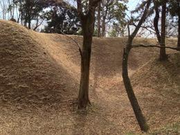 【菅谷館】本曲輪北側の堀と土塁。菅谷館、恐るべし。