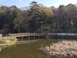 【石神井城】橋を渡って左手が本郭。