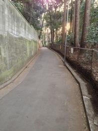 【石神井城】主郭と三宝寺の間の通り。西向きに撮影。パッと見、分からないが、右に主郭、左に三宝寺の土塁がある。