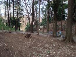 【石神井城】主郭の土塁が右手に見える。中央の道を通ると三宝寺池に至る。