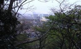 【小沢城】北向きに撮影。このまま直進し、多摩川を渡り、更に進むと深大寺城に至る。