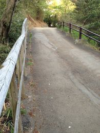 【枡形山城】手前の舗装部分が堀切だったようだ。このまま進むと、帯曲輪。側面を見ると、確かにコンクリートで嵩上げしてあった。縄張り図、参照 https://shirophoto.jp/photos/572